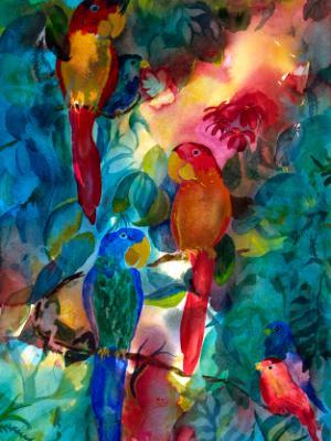 Wild Jungle Parrots