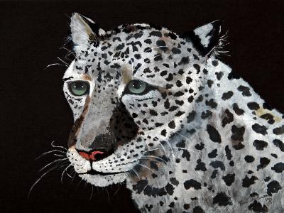 Vern, Snow Leopard