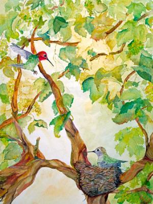 Anna's Nest