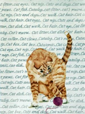 Cat with Words