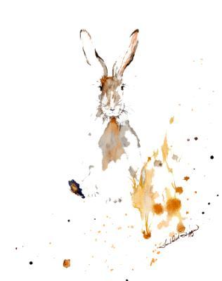 Hairy the Jack Rabbit