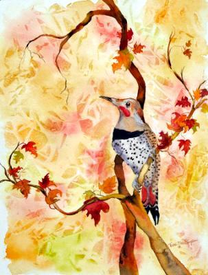 Autumn Glory: Northern Flicker