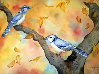 Autumn Jays
